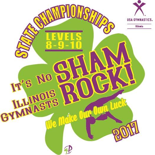 level 4 state gymnastics meet illinois 2014 stats